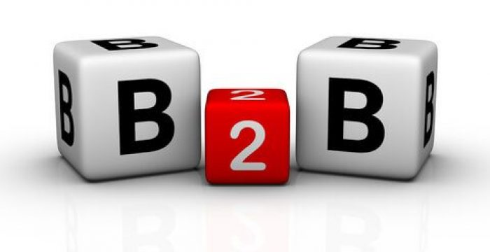 Maximise the Potential of B2B Data